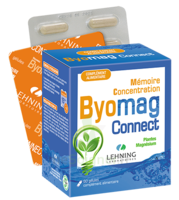 Lehning Byomag Connect Gélules B/60 à MONSWILLER