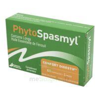 Phytospasmyl Caps B/60 à MONSWILLER