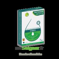 Phytosun Arôms pastilles sans sucre gorge arôme miel x 24 à MONSWILLER