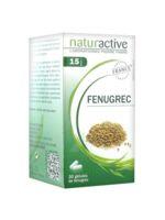 Naturactive Gelule Fenugrec, Bt 30 à MONSWILLER