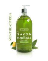 Beauterra - Savon De Marseille Liquide - Menthe/citron 1l à MONSWILLER