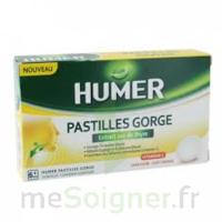 HUMER PASTILLE GORGE à l'etrait sec de thym 24 pastilles à MONSWILLER