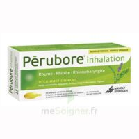 PERUBORE Caps inhalation par vapeur inhalation Plq/15 à MONSWILLER