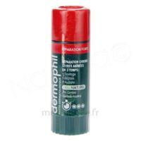 Dermophil Indien Réparation Forte Lèvres 4 g à MONSWILLER