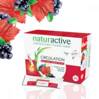 Naturactive Phytothérapie Fluides Solution Buvable Circulation 2b/20 Sticks/10ml à MONSWILLER