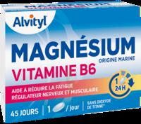 Govital Magnésium Vitamine B6 Comprimés B/45 à MONSWILLER