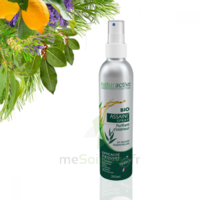 Naturactive Assaini'spray 200ml à MONSWILLER