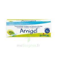 Boiron Arnigel Gel T(alumino-plastique)/45g à MONSWILLER
