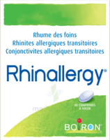 Boiron Rhinallergy Comprimés B/40 à MONSWILLER
