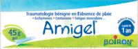 Boiron Arnigel Gel T/45g à MONSWILLER